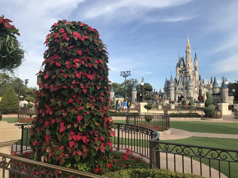magic kingdom walt disey world christmas decorations 20181