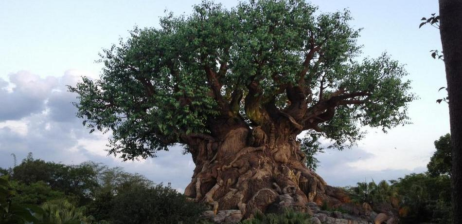 New Tree Of Life Awakenings Tribute To The Lion King Coming To Animal Kingdom This Summer Doctor Disney